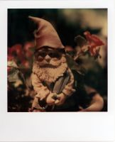 a gnome in a pot by futurowoman
