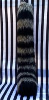 Raccoon tail front by fenrirschild