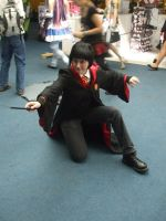 AS'11 Harry Potter by Hermy46