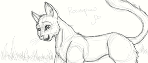 ravenpaw outline by WarriorapprenticeKat