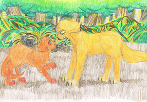 Fireheart vs. Goldenflower by pikachuabc
