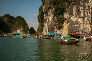 Ha Long Bay - Vietnam - Series: No 21 by SnapperRod