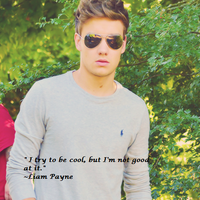 1D Challenge: Day 1-fave Liam quote by Toadettesupahfan18