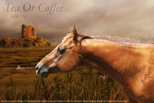 Tea Or Coffee by CocoQueenofCards