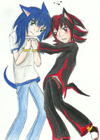 Sonic and shadow. YAY by cdla