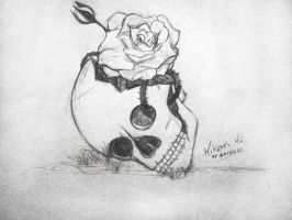 Skull and Rose by xLicht