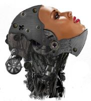 Female Cyborg Head by PipHampton