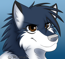 Joy -headshot pcm- by TrelDaWolf
