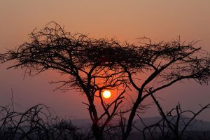 Sunset at Thanda by mfidler