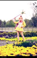 Atelier Meruru - Yellow Fields by aco-rea
