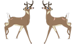 Stone-White Tailed Deer by RaindropLily