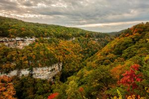 Cloudland Canyon State Park by rctfan2