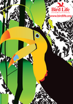 Tucan poster by Pearque