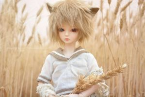Neil Winter Wheat by Reishiki77
