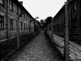 Auschwitz I by Per-Christian