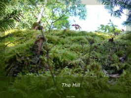 The Hill by isays