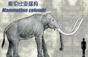 Mammuthus columbi by sinammonite