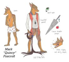 Mark 'Quincy' Foxcroft Old Ref by AmiliaLongTail