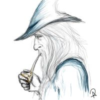Gandalf the Grey by ADDaughtry