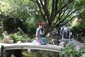 Chinese costume  221 by fa-stock