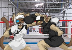 Yin Vs Yang Sparring By Inspectornills-d8 by Gexon