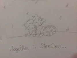 Together in StarClan by TinaS2Sweet