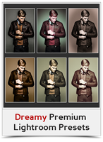 Dreamy Premium Lightroom Presets by khaledzz9