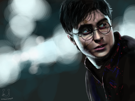 Harry and The Deathly Hallows by Fatmalovestodraw