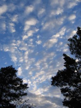 Clouds_3 by burivooh