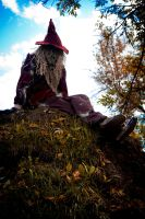 Scarecrow by mchechenev