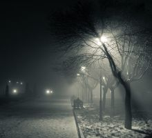 Foggy night_1 by d2fan