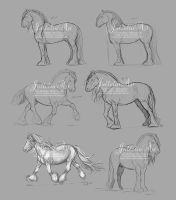 Hototo Sketches by Jullelin