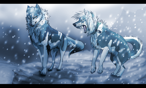 Snow Storm by xShadowBloodx