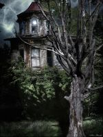 Old House With Tree Color by rsiphotography