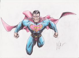 Superman by Maximilian1993