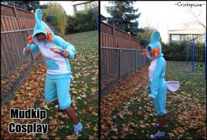 Mudkip Halloween '09 by Cristophine