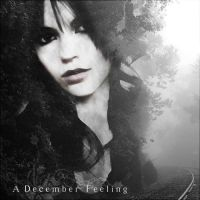 A December Feeling by blackriderrom