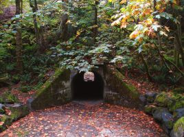 The Tunnel by midnightstouchSTOCK