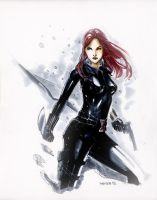Snow Widow by Peter-v-Nguyen