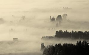 Bavarian morning IV by mutrus