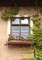 A Window That Reminds Me of Old Times by AgiVega