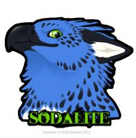 Sodalite Flat Badge by KatieHofgard