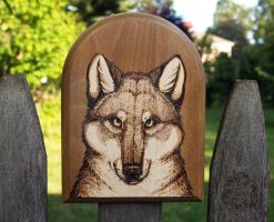 Wolf Pyrography by dakazi