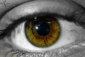 Eye Project: Impaled by ShineeDragon