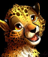 Cheetah cub by Anjali2010