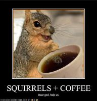 Squirrels+Coffee by salmiddle