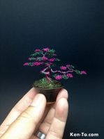 Pink Green wire bonsai tree by Ken To by KenToArt