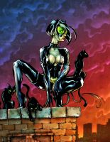 Catwoman Final by D-Cranford