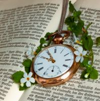 Pocket watch by Pamba
