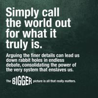 The Bigger Picture by OrderOfTheNewWorld